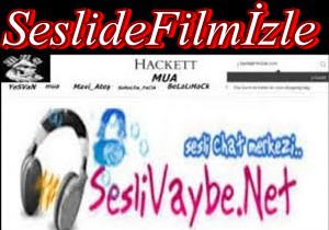 SesliVaybe